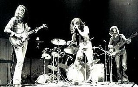 Cactus1971