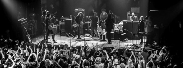 The Magpie Salute02.jpg