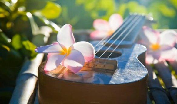 Hawaiian music4
