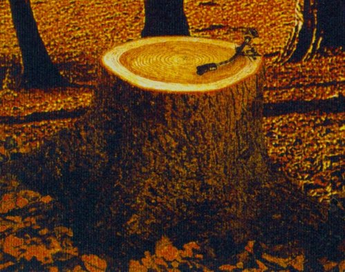 WoodenGrammophone