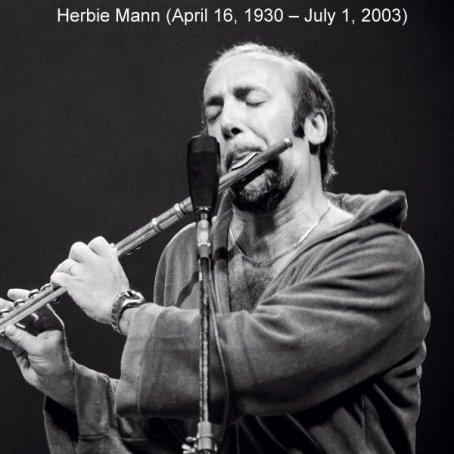 HerbieMann02