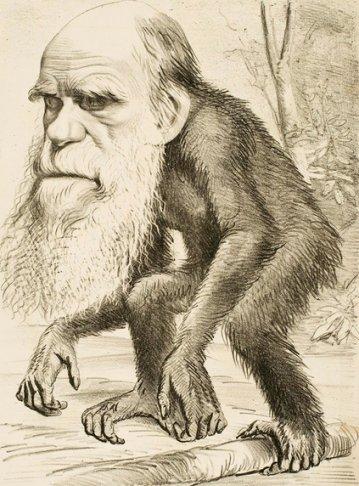 Darwin02