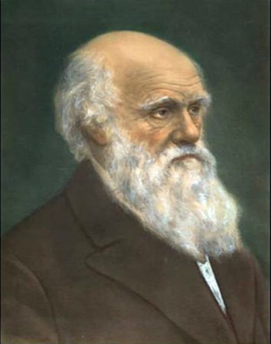 Darwin03