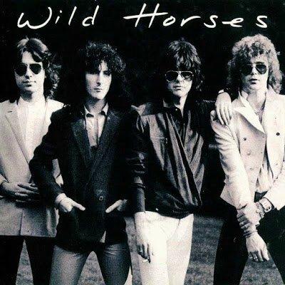 Wild Horses01