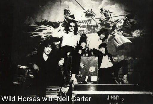 Wild Horses03
